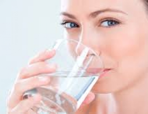 ¿Cuál es la función de la saliva?